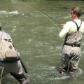 Home bend fly fishing guide for Fly fishing maui